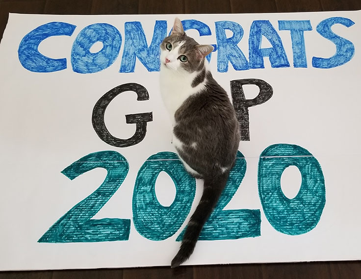 """A cat sits on top of a poster that reads """"Congrats GLP 2020"""""""